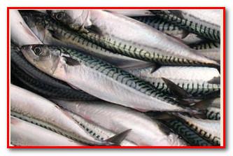 рыба- источник полезных жиров